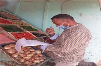 ضبط وإعدام أغذية فاسدة في حملة بمركز باريس بالوادي الجديد | صور