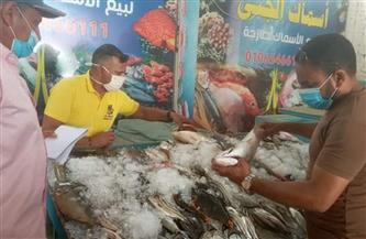 استعدادًا لعيد الفطر.. حملة على محلات الأسماك بالقصير | صور