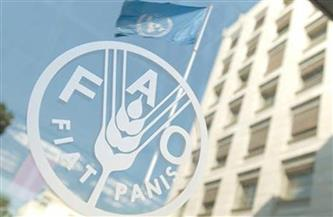 منظمة الفاو تدعو للتغلب على المعوقات التي تخنق قطاع الأغذية الزراعية في إفريقيا