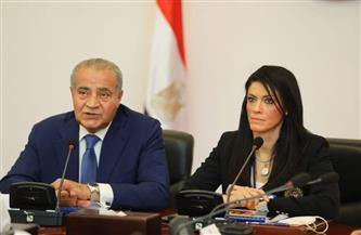 «التعاون الدولي» و«التموين» تعرضان جهود مصر لتعزيز سلاسل القيمة المستدامة والأمن الغذائي