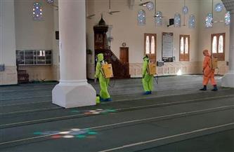حملات لتطهير المساجد الكبرى استعدادًا لصلاة العيد بالدقهلية | صور