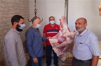ضبط لحوم لذبحها خارج السلخانة في حملة تموينية بـ«أجا»