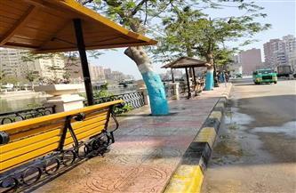حملة مكبرة لغسل الميادين وكنس شوارع المنوفية | صور