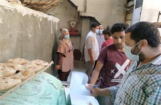 ضبط لحوم مذبوحة خارج السلخانة وتحرير 4 محاضر تموينية في «السادات» | صور