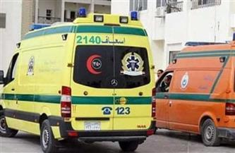 إصابة ربة منزل ونجليها أثناء مشاركتهم في إخماد حريق بسوهاج