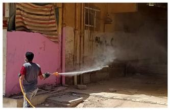 لمواجهة كورونا.. حملة لتطهير مساكن النوبارية غرب الإسكندرية |صور