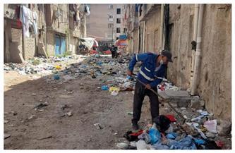 حملة لرفع تجمعات القمامة والمخلفات بمحيط مساكن العامرية البلد غرب الإسكندرية | صور