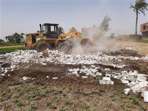 إزالة 10 حالات تعد على الأراضي الزراعية في المنوفية