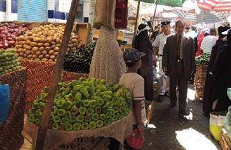 تكثيف الحملات على أسواق جنوب القاهرة خلال إجازة العيد