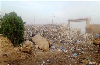 محافظ الشرقية: رفع مليون و646 طن قمامة| صور