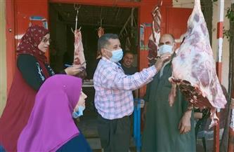 تحرير 130 محضرا في حملة لـ«صحة الدقهلية» خلال العيد