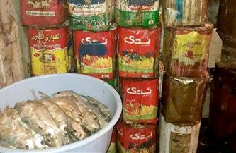 ضبط 1500 كجم مواد غذائية و1100 كجم أسماك مجمدة غير صالحة بالمنوفية