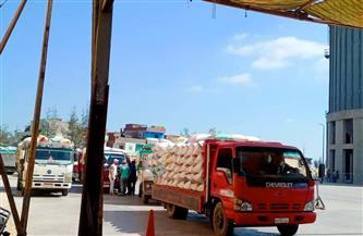 توريد 147 ألف طن قمح للشون والمطاحن بكفر الشيخ | صور