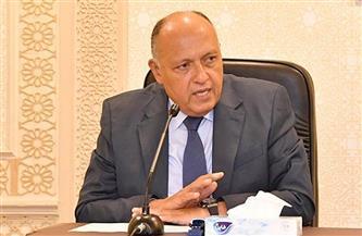 شكري أمام مجلس الأمن: مصر كثفت اتصالاتها مع الأطراف المعنية للتوصل لوقف إطلاق النار