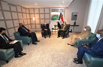 """الرئيس السيسي: مصر ستشارك في """"مبادرة تسوية مديونية السودان"""" باستخدام حصتها لدى صندوق النقد الدولي"""