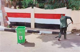 تحرير محاضر عدم ارتداء كمامة ونظافة بمدينة الزينية في الأقصر | صور