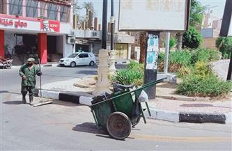 رفع 30 طنا من المخلفات في حملة قادها رئيس مجلس مدينة الأقصر   صور