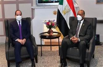 خبير سوداني: العلاقة بين القاهرة والخرطوم أزلية|  فيديو