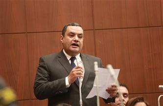 نواب تنسيقية شباب الأحزاب: نطالب المجتمع الدولي بتحمل مسئولياته بشأن الاعتداء على الشعب الفلسطيني| صور