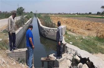 متابعة مناسيب مياه المجاري المائية وحالة الري في نطاق غرب البحيرة | صور
