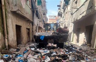 رفع المخلفات من الشوارع الخلفية لمنطقة العامرية البلد بالإسكندرية | صور