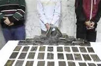 إحباط محاولة عناصر إجرامية ترويج 400 طربة حشيش بالبحيرة