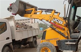 رفع 8 أطنان من المخلفات بقرية الشغب بمدينة إسنا