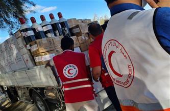 الهلال الأحمر المصري يزور قطاع غزة.. ويقدم الدعم والمساندة لنظيره الفلسطيني |صور