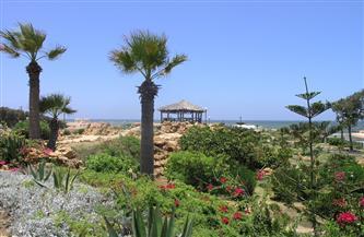 استعدادا للصيف.. حملة لتجميل الحدائق بالمنتزه بالإسكندرية