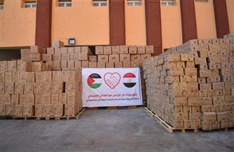 وزيرة الصحة: إرسال 65 طنًا من الأدوية والمستلزمات الطبية لدعم الأشقاء الفلسطينيين بقطاع غزة  صور