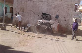 حملات نظافة شاملة بقرى شباس الشهداء وشباس الملح والعجوزين بدسوق كفرالشيخ |صور