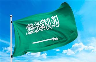 السعودية تشارك المجتمع الدولي باليوم العالمي للنحل 20 مايو