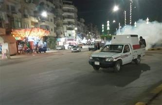 استمرار حملات مكافحة الحشرات الطائرة بدسوق في كفر الشيخ   صور
