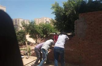 حملة لإزالة التعديات على أراضي الدولة بتقسيم أبو عشرة بالغردقة | صور