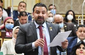 سلطان: مصر كانت دائمًا وأبدًا السند والمدافع الأول عن حقوق الشعب الفلسطيني