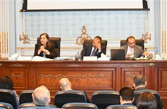 وزيرة التخطيط: إطلاق النسخة المحدثة من رؤية مصر 2030 يونيو المقبل