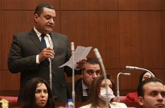 دعم متواصل من التنسيقية للقيادة السياسية ضد العدوان الإسرائيلي على غزة