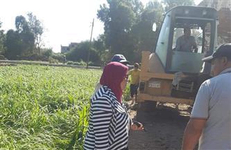 إزالة تعد على أرض زراعية في قرية الحامول بالمنوفية| صور