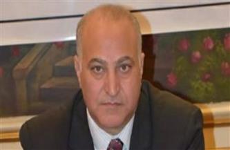 نقيب المهن الاجتماعية: مبادرة الرئيس لإعمار غزة عبرت عن الحب المصري للشعب الفلسطيني   فيديو