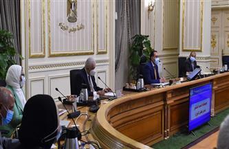 """الحكومة توافق على صفقة استحواذ التحالف بين """"مصر السيادي"""" و""""هيرميس"""" على ٧٦٪ من رأسمال بنك الاستثمار العربي"""