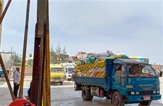 ارتفاع الكميات الموردة من القمح المحلي بكفرالشيخ إلى 91817 طنا