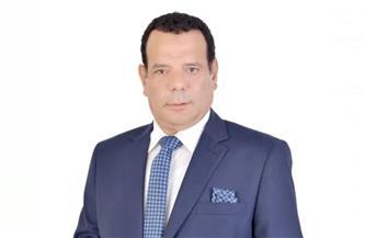 """أمين """"حماة الوطن"""" بالجيزة"""": إيقاف إطلاق النيران يؤكد قوة ومكانة مصر إقليميا ودوليا"""