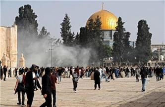 مديرة مكتب قناة رؤيا بفلسطين: الاعتداءات الإسرائيلية قتلت عائلات بالكامل