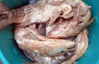 ضبط 90 كيلو أسماك مملحة غير صالحة للاستهلاك الآدمي قبل بيعها للمواطنين في سوهاج