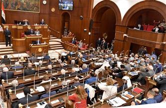"""""""الشيوخ"""" عن الموافقة على خطة التنمية للعام المالي الجديد: ناقشنا أكبر موازنة في تاريخ مصر"""