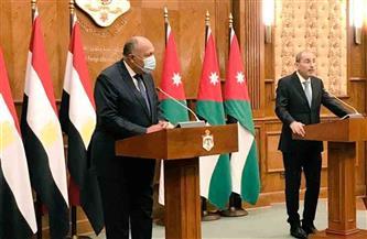 شكري: لابد من إنهاء الصراع والوصول لحل نهائي للقضية الفلسطينية