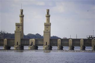 القناطر الخيرية.. «الفسحة التاريخية للمصريين.. 10 حدائق بمساحة 70 فدانا وأشجار عمرها 200 عام» | فيديو
