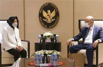 سفير مصر في إندونيسيا يلتقي وزيرة الشئون الاجتماعية هناك