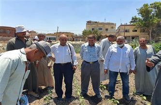 ندوة زراعية بالشرقية حول محصول القطن وسلالته جيزة 94 |صور