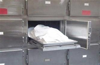 مصرع مواطن أسفل عجلات قطار في المحلة الكبرى